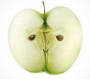Jornada de nutrición en Crene