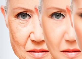 alimentos para la menopausia